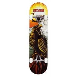Skateboard Completo TONY HAWK SS180 Hawk Roar 7.75 funbox.org