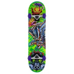 Skateboard Completo Tony Hawk ss360 Toxic 7.5 funbox.org