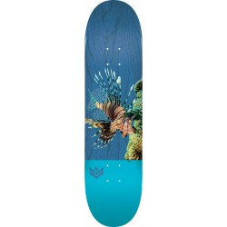 "Skateboard Deck Mini Logo Lion Fish 8.0"""